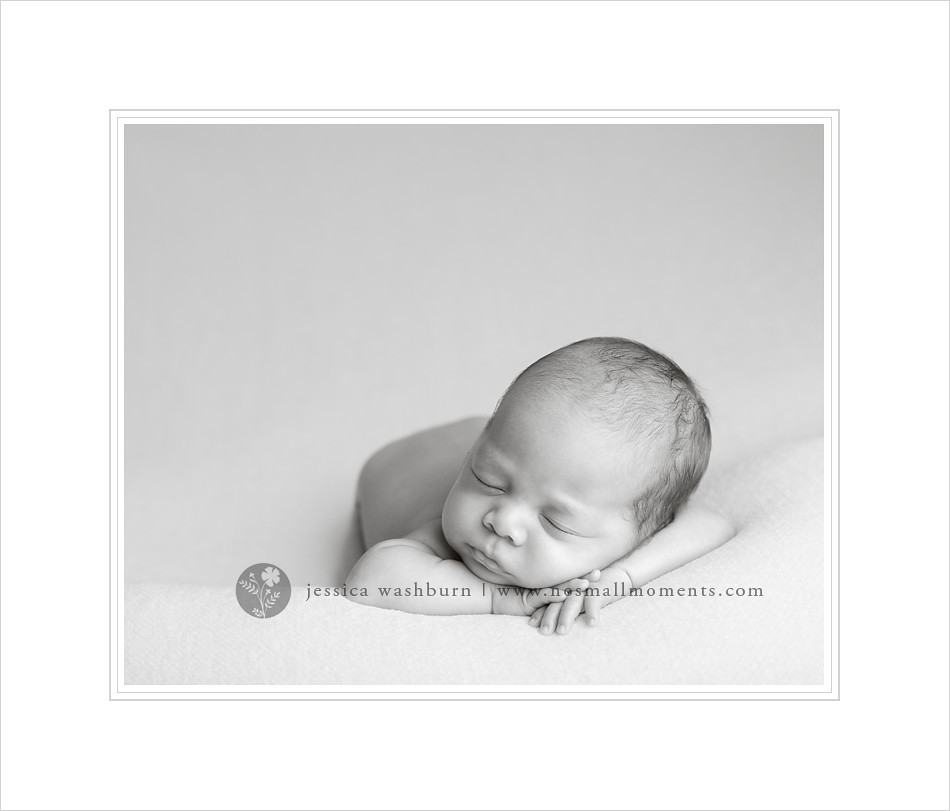 Saratoga newborn photographer