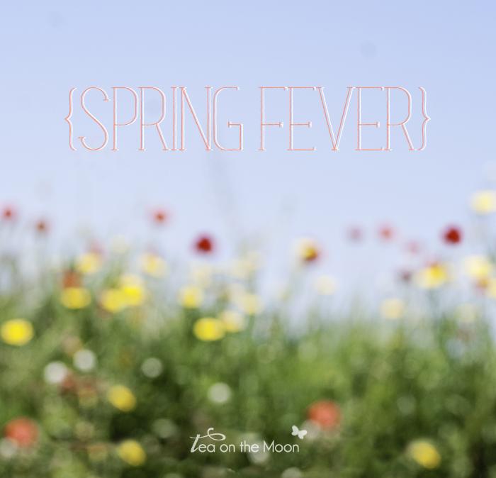 campos en primavera spring fever