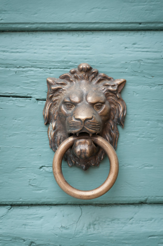 close of antique brass lion door handle