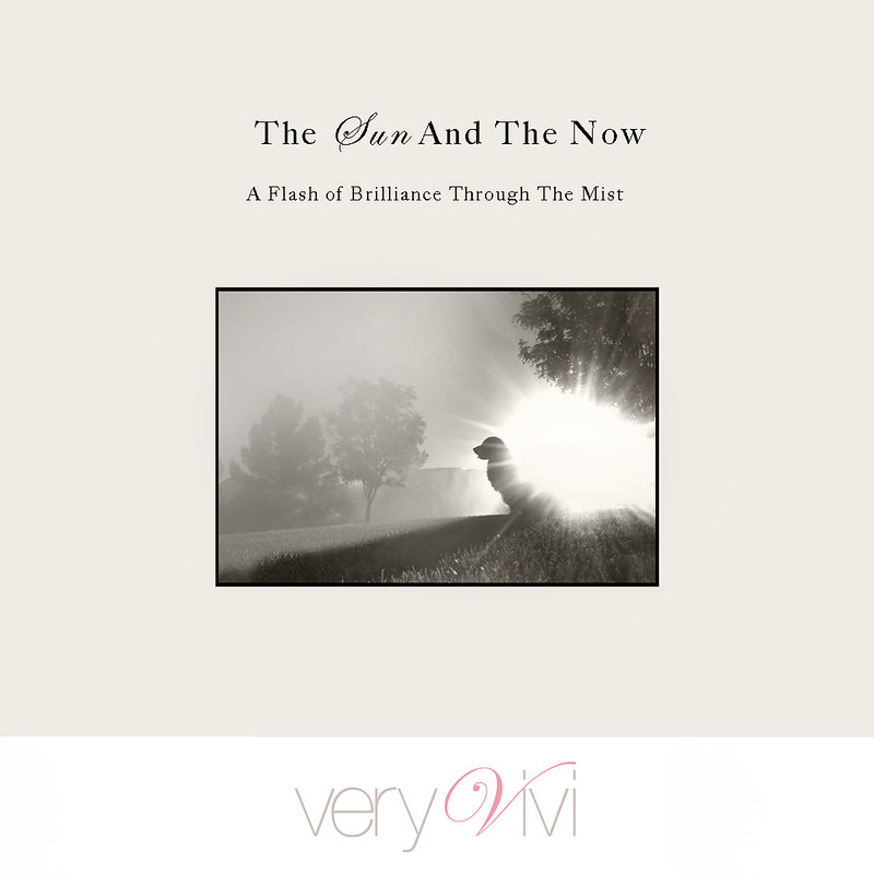 The Sun & The Now - The New Moon