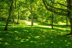 Cyfarthfa Park & Castle