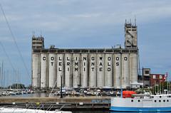 Abandoned Grain Terminal