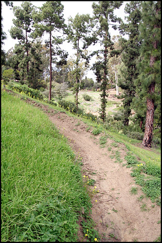 Balboa BMX Trails (8)