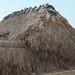 Palm House - Casa de palma entre San Mateo del Mar y Santa María del Mar, Región Istmo, Oaxaca, Mexico por Lon&Queta