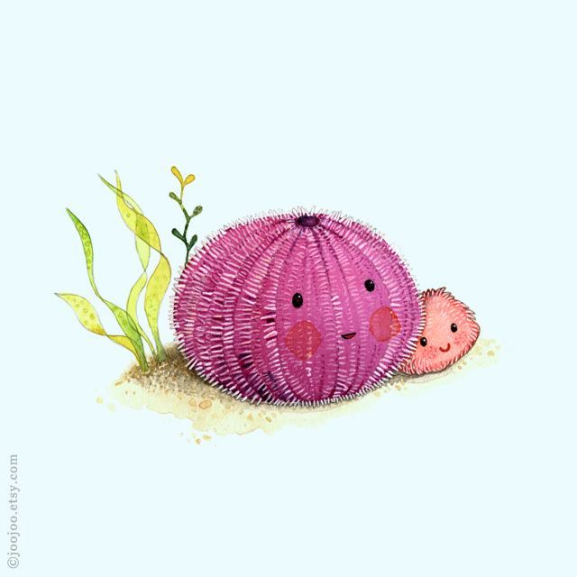 Urchin watercolor painting