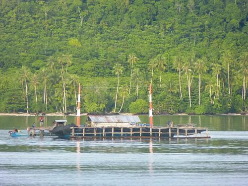 Moluques13-Saparua-Ambon-Bateau (49)