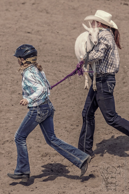 Gooseberry Lake : 4-H Rodeo 2013 : They'll Get Your Goat