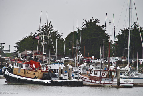 Eureka Marina