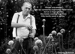 Charles Bukowski Quotes Love