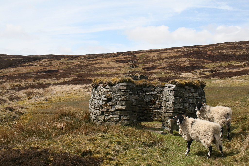Shooting Butts on Gunnerside Fell