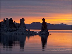 Mono Lake Dawn, Summer 2014