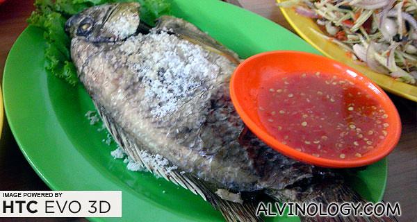 Barbecued fish, baked with salt