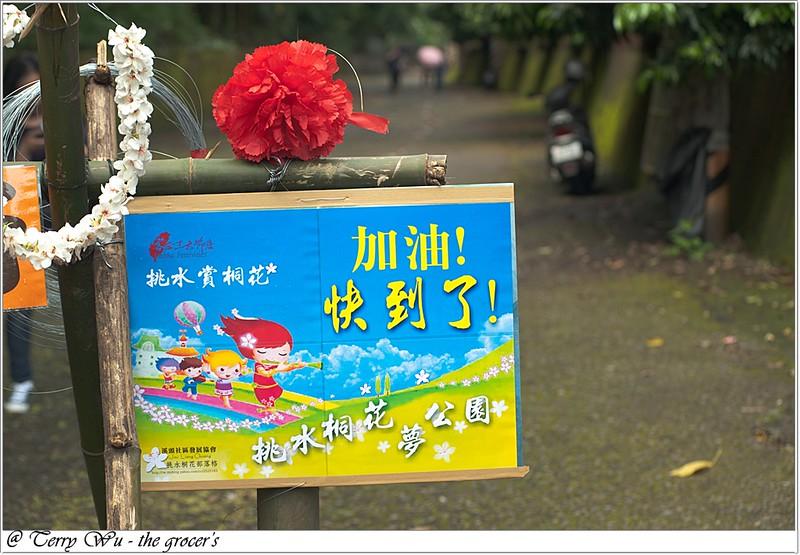 2012-04-19 挑水古道桐花-6