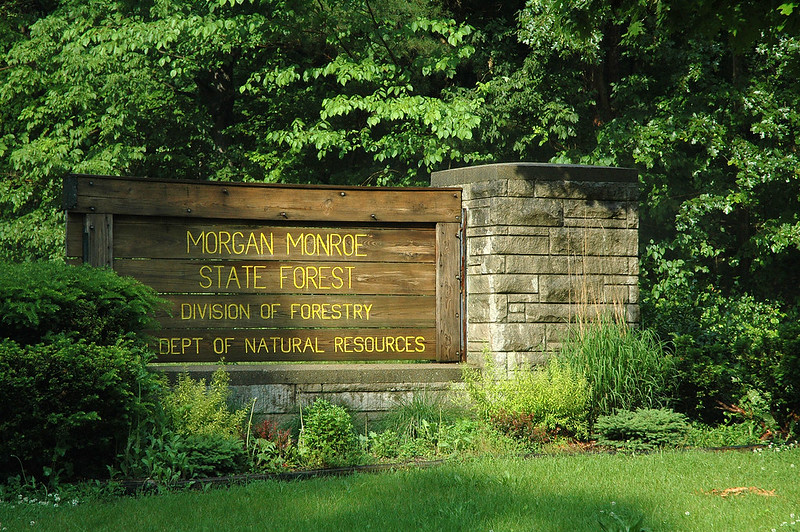 Morgan-Monroe State Forest