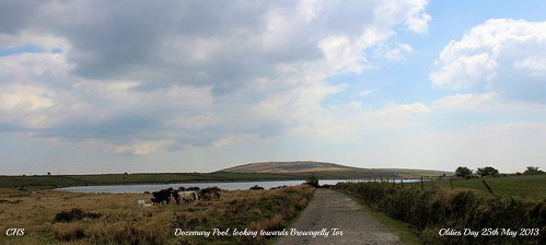 Dozemary Pool, looking towards Browngelly Tor by Stocker Images