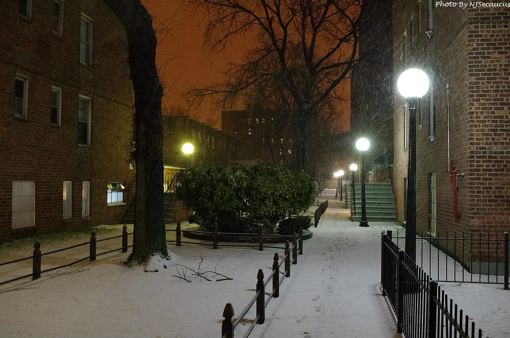 【Kit Lens趴趴照】清涼的雪中送炭篇