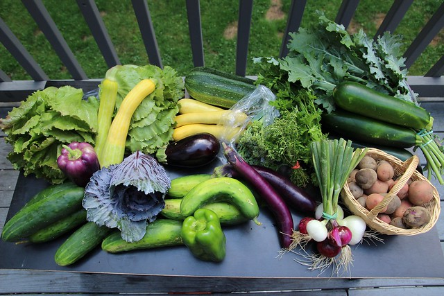 csa share :: week 6 (+ some other kitchen bits)