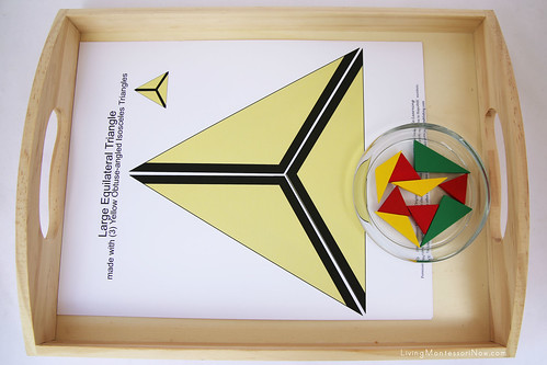 Constructive Triangles Extension Tray