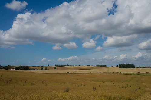 blue trees sky field yellow clouds day cloudy sweden farm harvest hills explore rapeseeds skånecounty