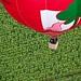 Mondial Air Ballons 2013 #LMAB13