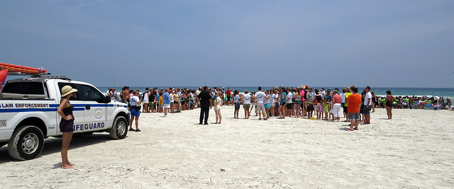 Sea Turtle Release crowd