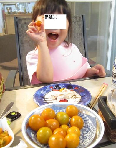 自分で収穫したトマトを食べる 2013年8月11日18:29 by Poran111