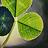 the Green Eden group icon