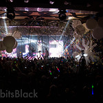 Groove-Cruise-LA-2013-Rabbits-Black (59)