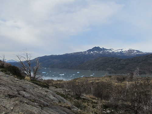 Torres del Paine: trek du W. Jour 4: à la conquête du glacier Grey.