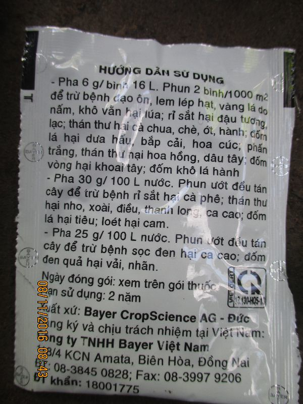 thuoc diet tru benh suong mai gay vang la tren cay hoa hong (7)