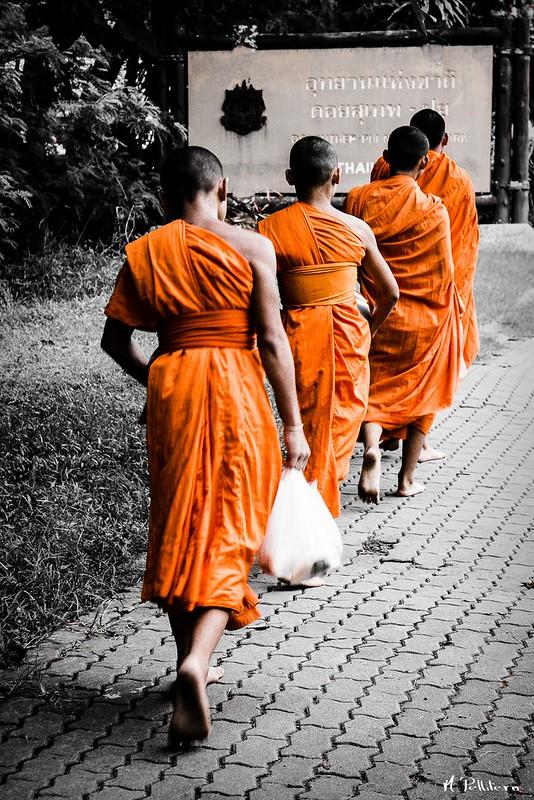 Monjes - Chiang Mai