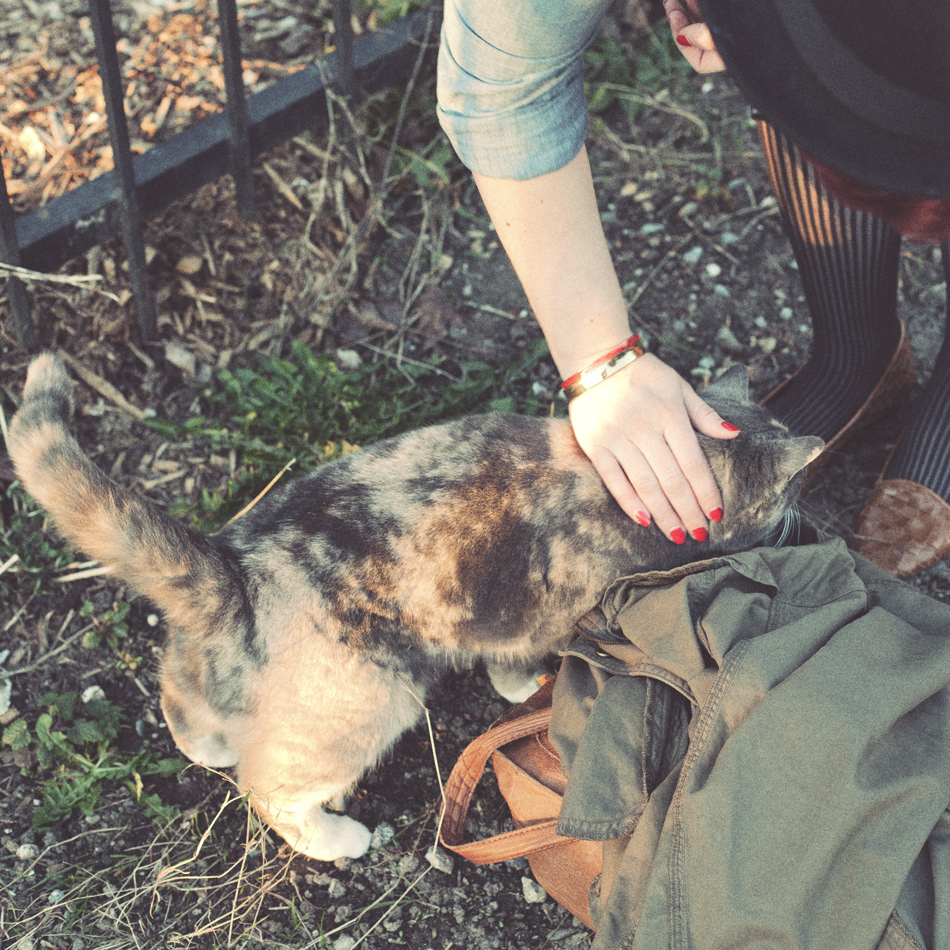 a photo of me, petting an adorable tortishell cat