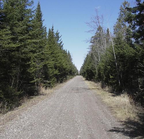 Cloquet Trail