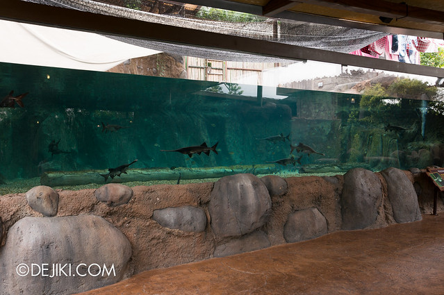 River Safari - Mississippi Paddlefish