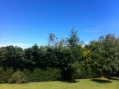 Beautiful sunny day today in Edinburgh.
