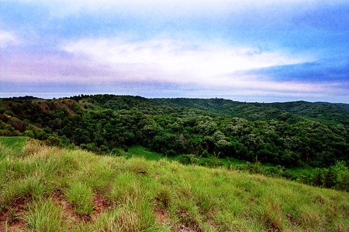 color film forest self canon diy is state iso400 7 iowa hills 24mm elan portra developed f28 jobo loess