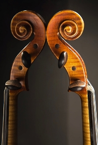 Photo of violin scrolls