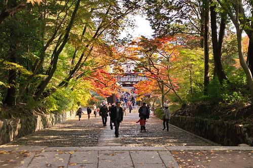【写真】2012 紅葉 : 光明寺/2020-11-11/IMGP6490