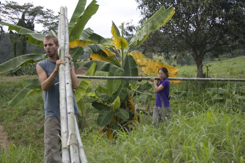Tacomepai Organic Farm, Pai Thailand 17