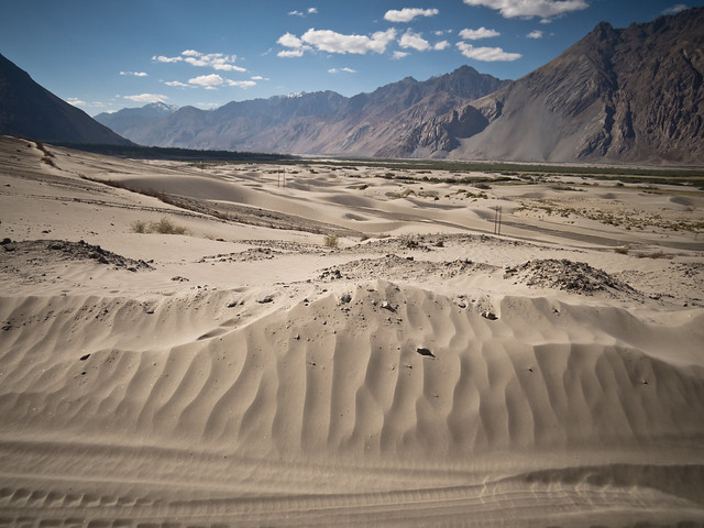Nubra Valley-20