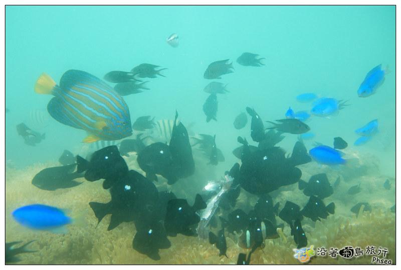 2013歐船長東海休閒漁業_89