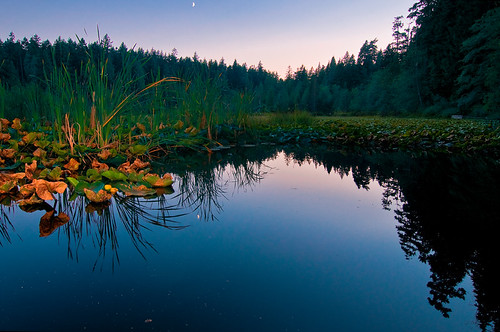 Beaver Lake by petetaylor