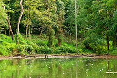 Paradise - Little Seneca Lake- Boyds MD