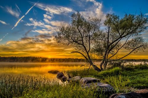 trees sky lake misty clouds sunrise virginia rocks unitedstates leesburg