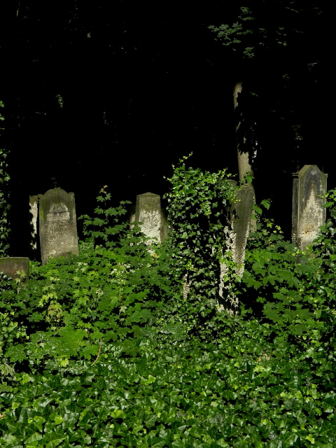 Jüdischer Friedhof Berlin_2013_26