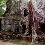 Angkor Temple