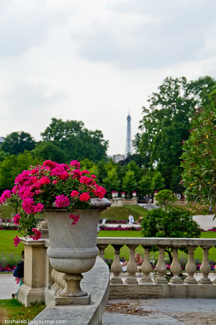 Люксембургские сады-13