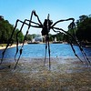Oh dear, there seems to be a gigantic spider in the reflection pool.