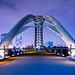 The Bridge by dan sedran