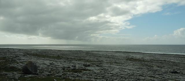 les gris irlandais